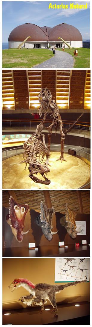 Muja, Museo Jurasico de Asturias